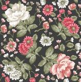 Реалистическая изолированная картина цветков Винтажная барочная предпосылка Стоцвет, пионы обои Гравировка чертежа Викторианец ве бесплатная иллюстрация