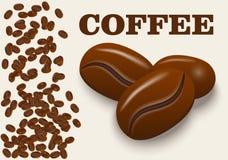Реалистические кофейные зерна изолированные на предпосылке также вектор иллюстрации притяжки corel Стоковые Фотографии RF