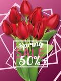 Реалистические красные тюльпаны букет скидки весны, буклет, вектор брошюры Стоковая Фотография