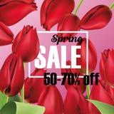 Реалистические красные тюльпаны букет скидки весны, буклет, вектор брошюры Стоковое Изображение RF