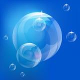 Реалистические пузыри вектора, вектор пузырей Стоковая Фотография
