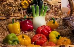 Реалистические плодоовощи для свечей праздников Стоковое Изображение RF