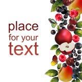 Реалистические ягоды на белой абстрактной предпосылке Стоковое Фото
