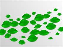 Реалистический зеленый цвет выходит абстрактная предпосылка изображения экологичности принципиальной схемы еще многие мое портфол Стоковое Изображение