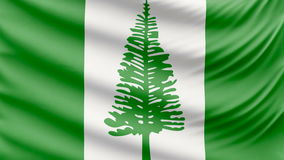Реалистический красивый флаг 4k Норфолка сток-видео