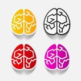 Реалистический элемент дизайна: мозг Стоковое Фото