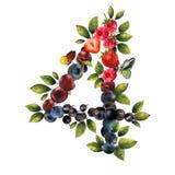 4 реалистических ягод Стоковое Изображение RF