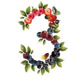 3 реалистических ягод Стоковое Фото