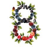 8 реалистических ягод Стоковое Изображение RF