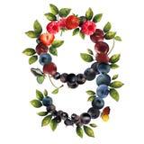 9 реалистических ягод Стоковая Фотография