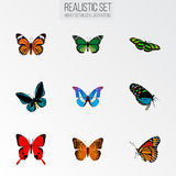 Реалистическое Demophoon, монарх, зеленый павлин и другие элементы вектора Комплект символов бабочки реалистических также включае Стоковая Фотография RF
