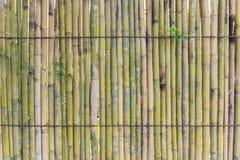 Реальная бамбуковая предпосылка текстуры стены Стоковые Фото