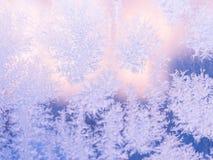 Реальная морозная картина на окне зима белизны снежинок предпосылки голубая матированное стекло Стоковая Фотография