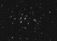 Реальное большое звездное скопление M44 или NGC 2632 группа улья в Карциноме созвездия в северном небе принятом с камерой CCD и Стоковые Изображения