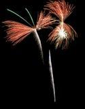 Реальные изолированные фейерверки, картина бабочки Стоковые Изображения RF