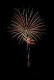Реальные изолированные фейерверки, картина цветков Стоковая Фотография