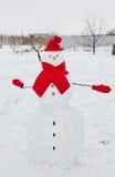 Реальный снеговик outdoors Стоковые Изображения
