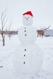 Реальный снеговик outdoors Стоковые Фотографии RF