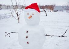 Реальный снеговик outdoors Стоковая Фотография