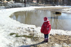 Ребенк смотрит птиц Стоковое фото RF