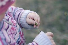 ребенок вручает s Стоковые Изображения RF