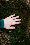 Ребенок в поле природы касающем Стоковые Фото