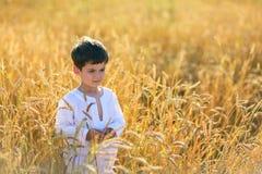 Ребенок в поле пшеницы Стоковые Изображения RF