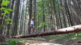 Ребенок в ребенк журнала дерева леса идя играя располагаясь лагерем древесину девушки приключения на открытом воздухе стоковые фотографии rf
