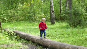 Ребенок гуляя в парк осени Мальчик идет на упаденное дерево видеоматериал
