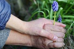 Ребенок держа руки его motherСтоковое Фото