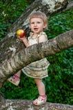 Ребенок есть яблоко в ветвях дерева Стоковые Фото