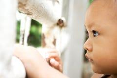 ребенок заключил сиротливое в турьму Стоковое Изображение RF