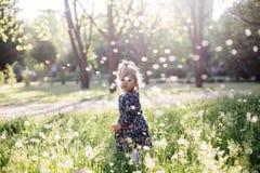 Ребенок захода солнца одуванчиков стоковое изображение