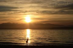 Ребенок играя на заходе солнца стоковая фотография