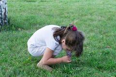 Ребенок играя на траве Стоковое Изображение