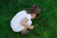 Ребенок играя на траве Стоковое Изображение RF