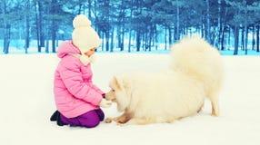 Ребенок играя с белой собакой Samoyed в зиме стоковая фотография