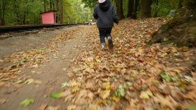 Ребенок идет через лес осени девушка пинает вверх желтые листья сток-видео