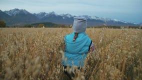 Ребенок идя в пшеничное поле Бега ребенк против фона красивых гор со снегом покрыли пики Ребенок сток-видео