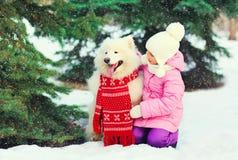 Ребенок и белая собака Samoyed в красном шарфе около зимы рождественской елки стоковые фотографии rf