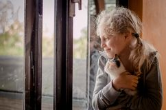 Ребенок и кот самостоятельно окном стоковая фотография rf