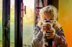 Ребенок и кот стоковая фотография