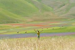 Ребенок и поле Стоковое Изображение RF