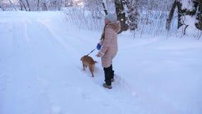 Ребенок и собака идут вдоль пути в девушке леса зимы играя с собакой в снеге в зиме в парке сток-видео
