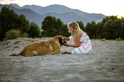 Ребенок и собака стоковое фото