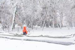 Ребенок и сломал вниз с дерева снега Горизонтальный взгляд ребенка Стоковые Изображения RF