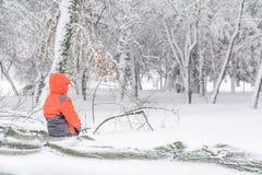 Ребенок и сломал вниз с дерева снега Ребенок сидя над хоботом Стоковое Фото