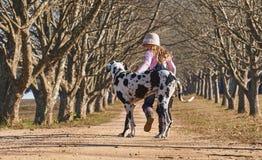 Ребенок маленькой девочки играя идти ее датчанин собаки большой стоковая фотография rf