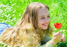 Ребенок наслаждается благоуханием тюльпана пока лежащ на луге Девушка на счастливой стороне держит красный цветок тюльпана на сол Стоковые Фото