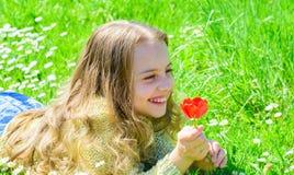 Ребенок наслаждается благоуханием тюльпана пока лежащ на луге Девушка на счастливой стороне держит красный цветок тюльпана на сол Стоковые Изображения RF